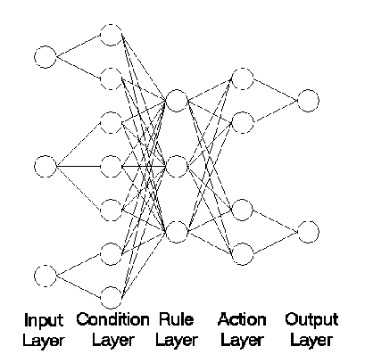 Structure of the Evolving Fuzzy Neural Network EFuNN